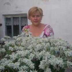 Попова Мила Николаевна
