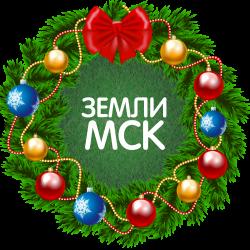 Толмачева Лилия