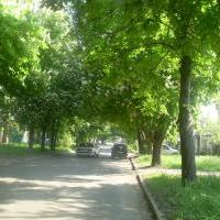 Иванова Татьяна Викторовна