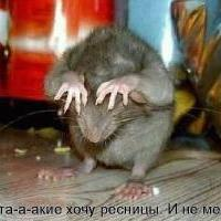 Покофьева Алина Борисовна