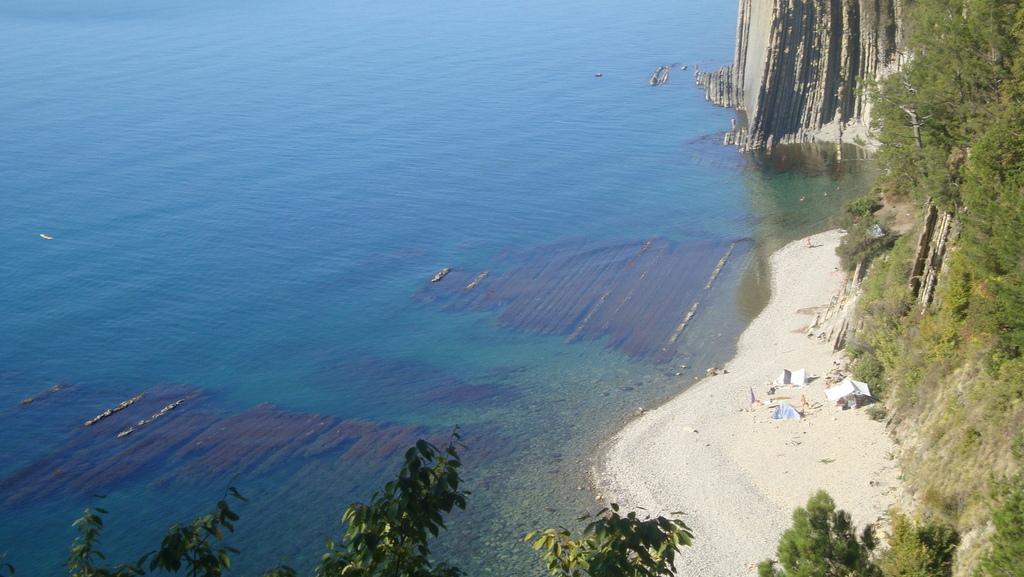 Сосновый краснодарский край пляж фото
