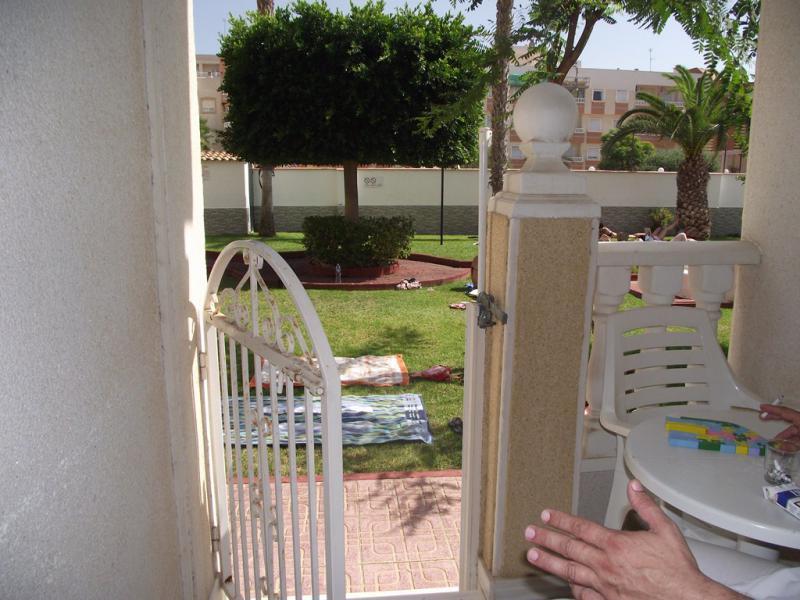 Торревьеха испания аренда недвижимости