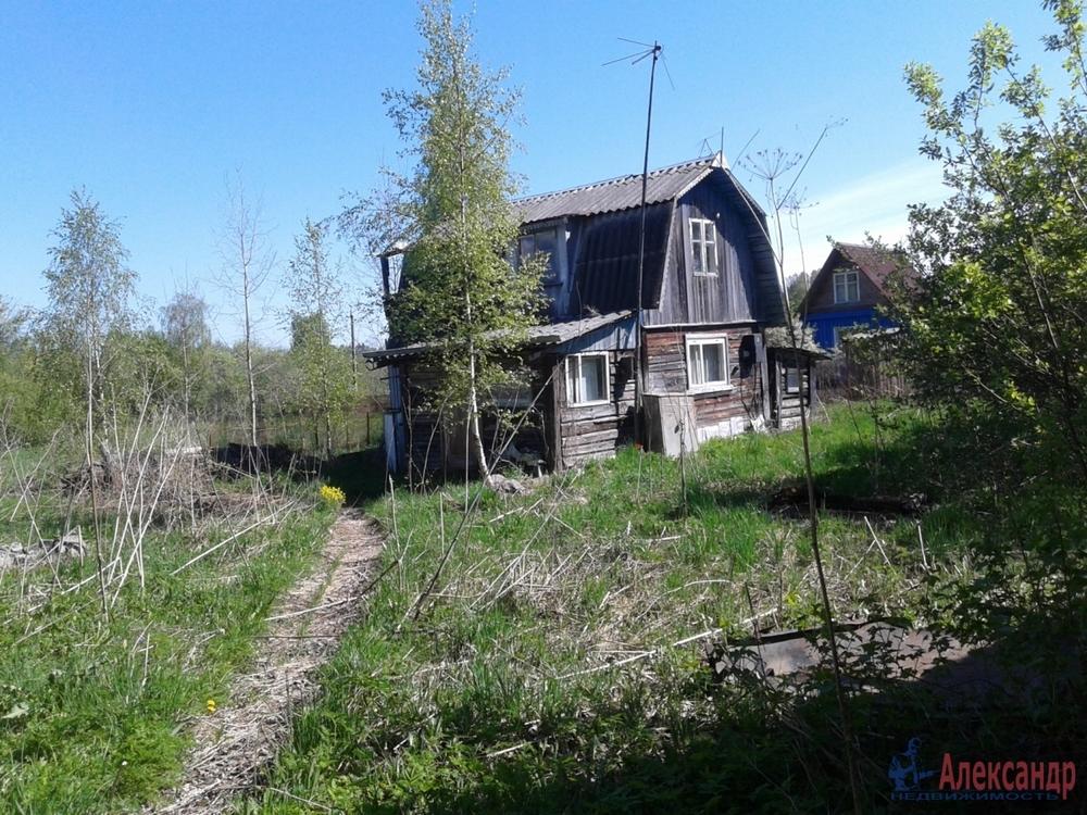 знак войны, история возникновения поселка берёзово в лен области подвески бесплатно