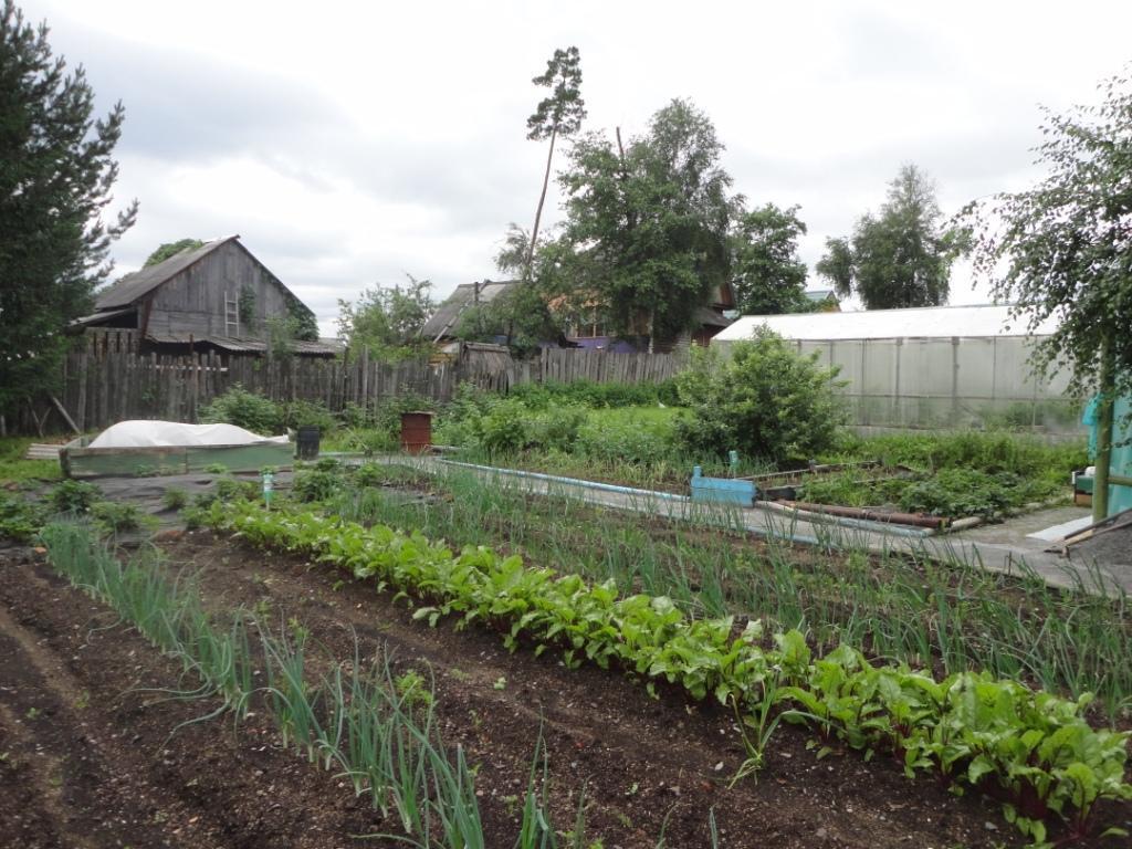 садовые участки с домиком фото