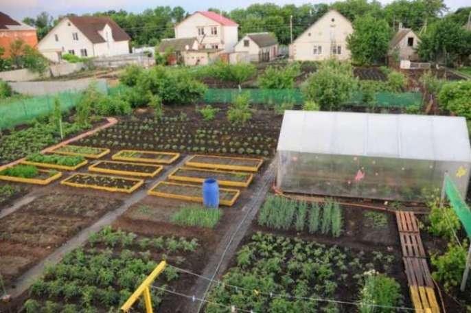 Схема огорода 4 сотки где что сажать фото 76