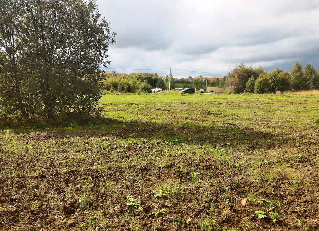 оформление земельного участка в клинском районе пылало оно