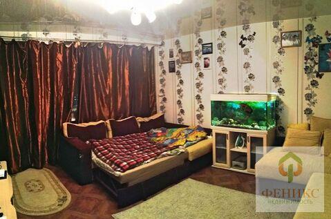 Квартира пр.просвещения - Фото 3