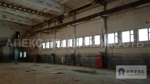 Продажа помещения пл. 1471 м2 под производство, пищевое производство, . - Фото 2