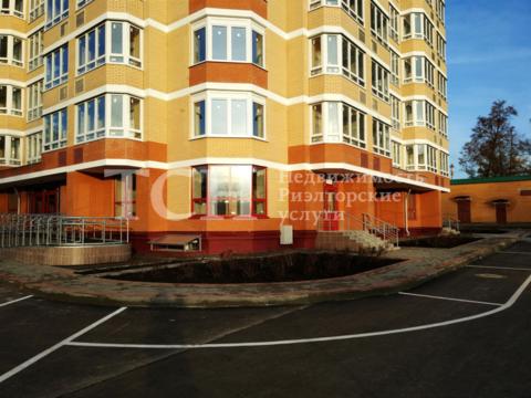 Торговая площадь, Ивантеевка, ул Школьная, 5 - Фото 2