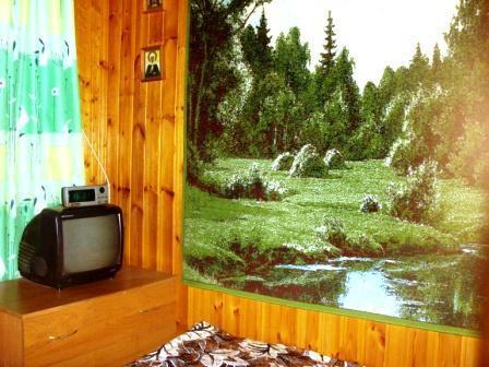 Двухкомнатная квартира р-н КИЗ - Фото 3