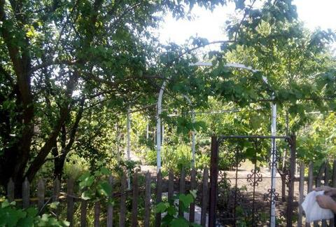Продается дача Сады-1 - Фото 2