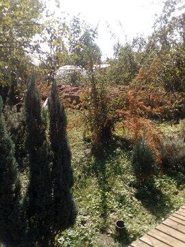 Продам дачу на садоводческом товариществе - Фото 5