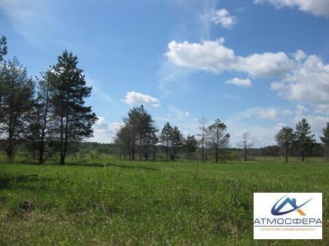 Продается земельный участок 1 га Красный Профинтерн - Фото 1