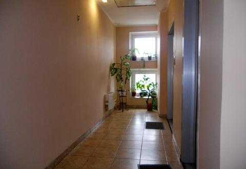 Трехкомнатная квартира на Пулковской (Водный стадион) - Фото 3
