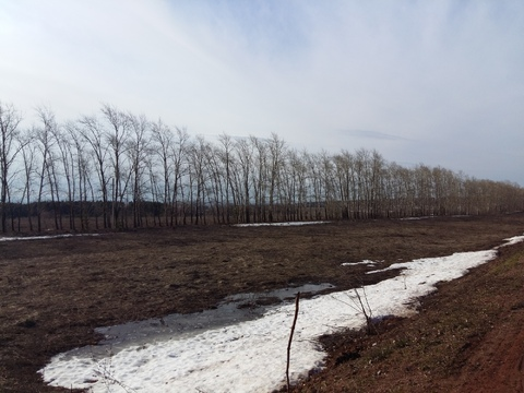 Продам земельный участок в с. Первушино, 35 км, от Уфы - Фото 2