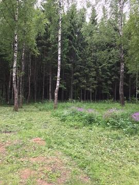Продается земельный участок в СНТ Старт Кубинка - Фото 2