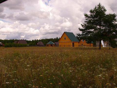 30 соток в д.Ново-Аносово , Клепиковского района, Рязанской области. - Фото 4