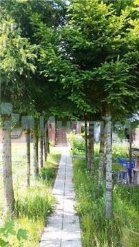 Продажа дома, Мышецкое, Солнечногорский район, Краснополянская улица - Фото 1