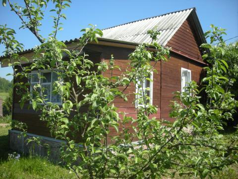 ИЖС, дача в деревне Тюфанка Чеховского р-на дом 1 эт. 30 кв.м, 59 км - Фото 5