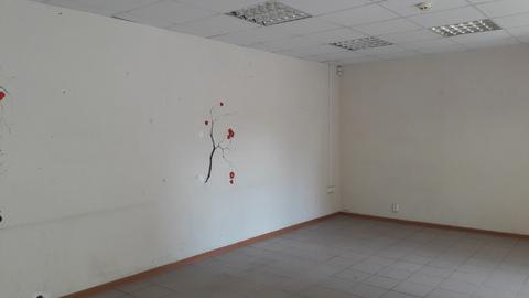 Сдам офис на ул.Лакина (пл.Революции) - Фото 3