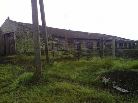 Продается ферма с животными на участке 60 га, с. Темнолесская - Фото 4