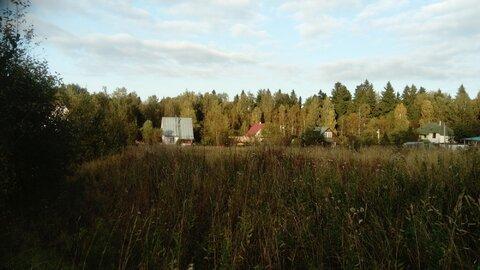 Продам участок в деревне Рыгино - Фото 4