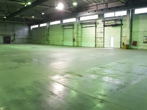 Сдам производственное помещение 2380 кв.м, м. Комендантский проспект - Фото 2