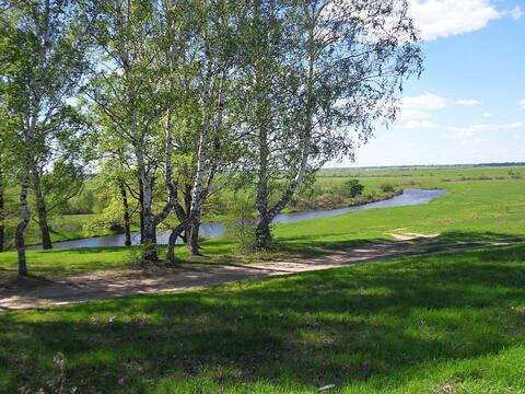 Участок 36 соток в селе Чернцы Лежневского района Ивановской области - Фото 1