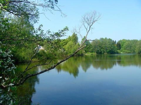 ИЖС, природа, лето! - Фото 1