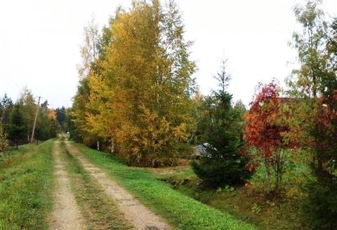 Сосново - трасса Сартовала , деревня Иваново - Фото 3