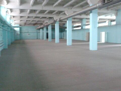 Сдам склад пр-во (пищевое) 1850 кв.м, 2-й эт. Без комиссии - Фото 2