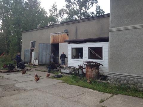 Сдается холодный склад 700 м2 в п. Лаголово, Ломоносовский р-н - Фото 1