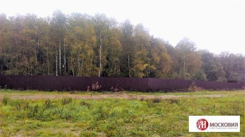 Прилесной участок недорого Новая Москва, ИЖС, Киевсокое или Калужское - Фото 2