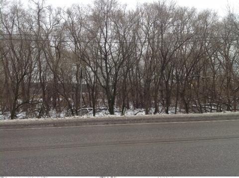Первая линия от шоссе 60 соток д.Вялки - Фото 2