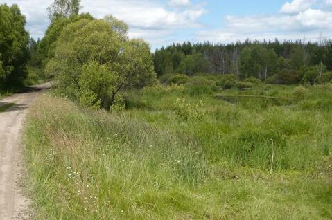Участок на берегу реки Пра в д.Взвоз, Клепиковского района. - Фото 2