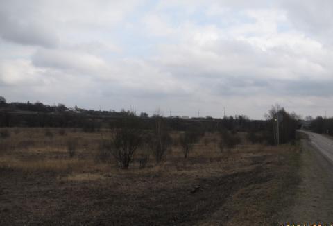 Продам 2,5 га вдоль Новорязанского ш. 35 км от МКАД ок. г. Бронницы - Фото 4