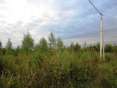 Участок 15 сот в днп в районе деревни Новинки, Дмитровского р-на. - Фото 3