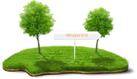 http://cnd.afy.ru/files/pbb/max/0/07/078bde3f9e811880a606b5020121394001.png
