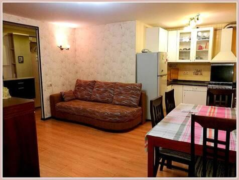 Уютная квартира студия в центре Солнечногорска - Фото 1