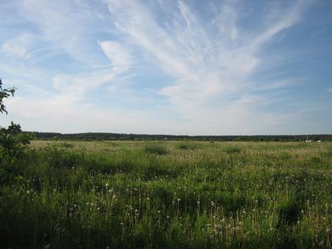 С. Куракино 44 га, Калужская область - Фото 4