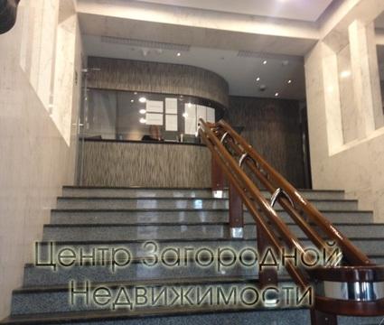 Аренда офиса в Москве, Спортивная Фрунзенская, 780 кв.м, класс B. м. . - Фото 2