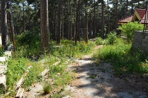 Участок в экологически чистом районе, Долоссы - Фото 2