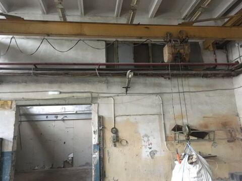 Сдам производственное помещение 527 кв.м, м. Черная речка - Фото 3