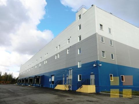 Склад класса А на Шафировском, 2700 кв.м, офисы - Фото 2