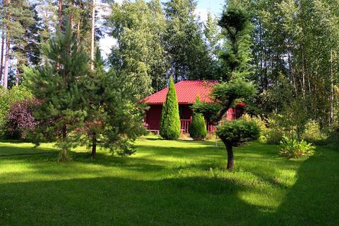 Загородный особняк в окружении многовекового леса - Фото 4