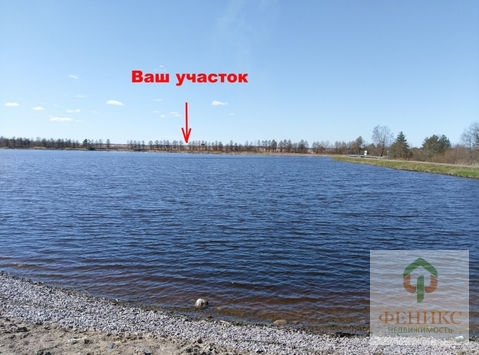 Ломоносовский район, Низино 7 соток ИЖС - Фото 4