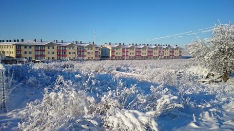 Малое Карлино, Виллозское поселение - Фото 3
