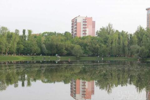 Уютная квартира на ул. Красных Зорь - Фото 2