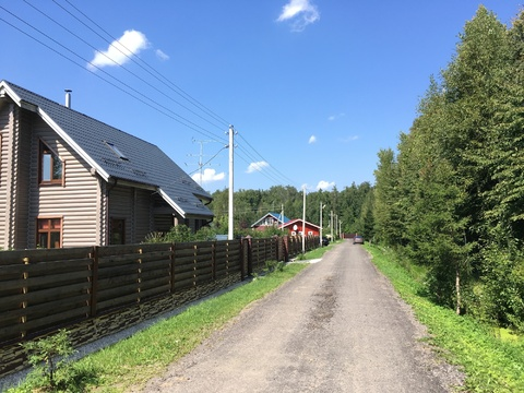 Земельный участок в лесу, 20 соток, Киевское ш, - Фото 5