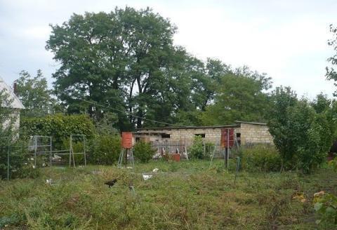 Фермерское хозяйство обоснованное на базе домашнего - Фото 2